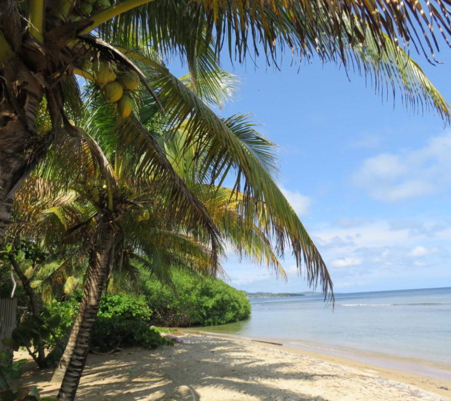 plage de honduras 1024x768 900x800 - Blog de Voyages