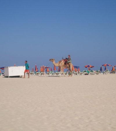 15 au 29 août 09 Fuerté Lanzarote 055 1024x768 400x450 - Fuerteventura