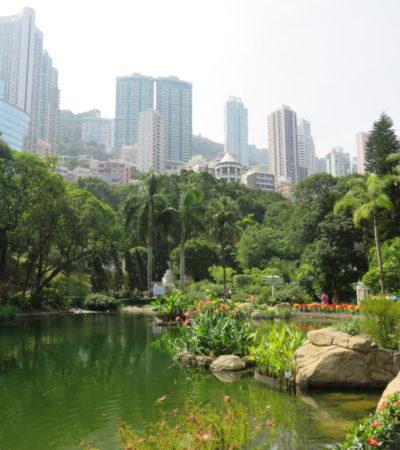 IMG 0397 1024x768 400x450 - Hong Kong