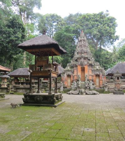 IMG 0507 1024x768 400x450 - Bali