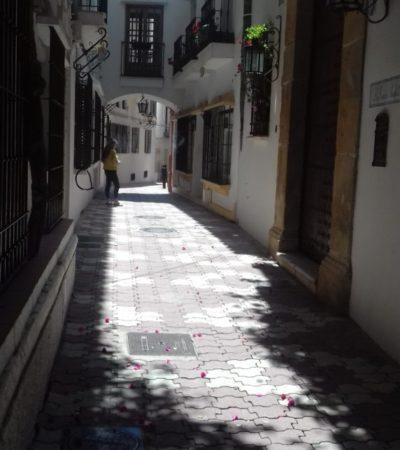 20180625 160835 572x1024 400x450 - Malaga