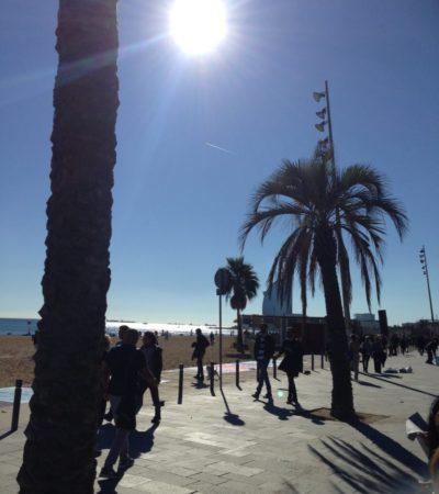 IMG 4436 768x1024 400x450 - Barcelone