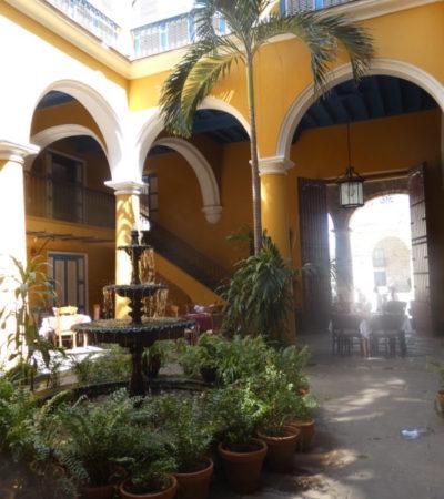 P1000425 576x1024 400x450 - Havane