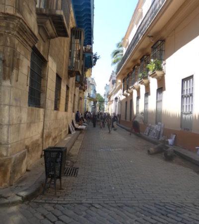 P1000426 576x1024 400x450 - Havane