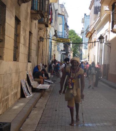 P1000428 576x1024 400x450 - Havane