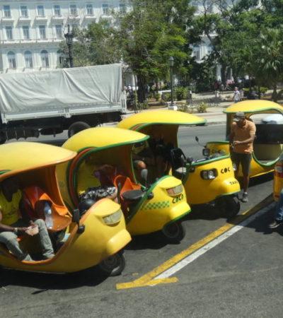 P1000441 1024x576 400x450 - Havane