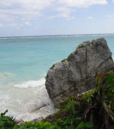 DSC00353 1024x768 400x450 - Cancun