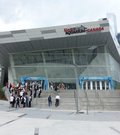 Ripleys aquarium 21 1700x1275 400x450 - Toronto