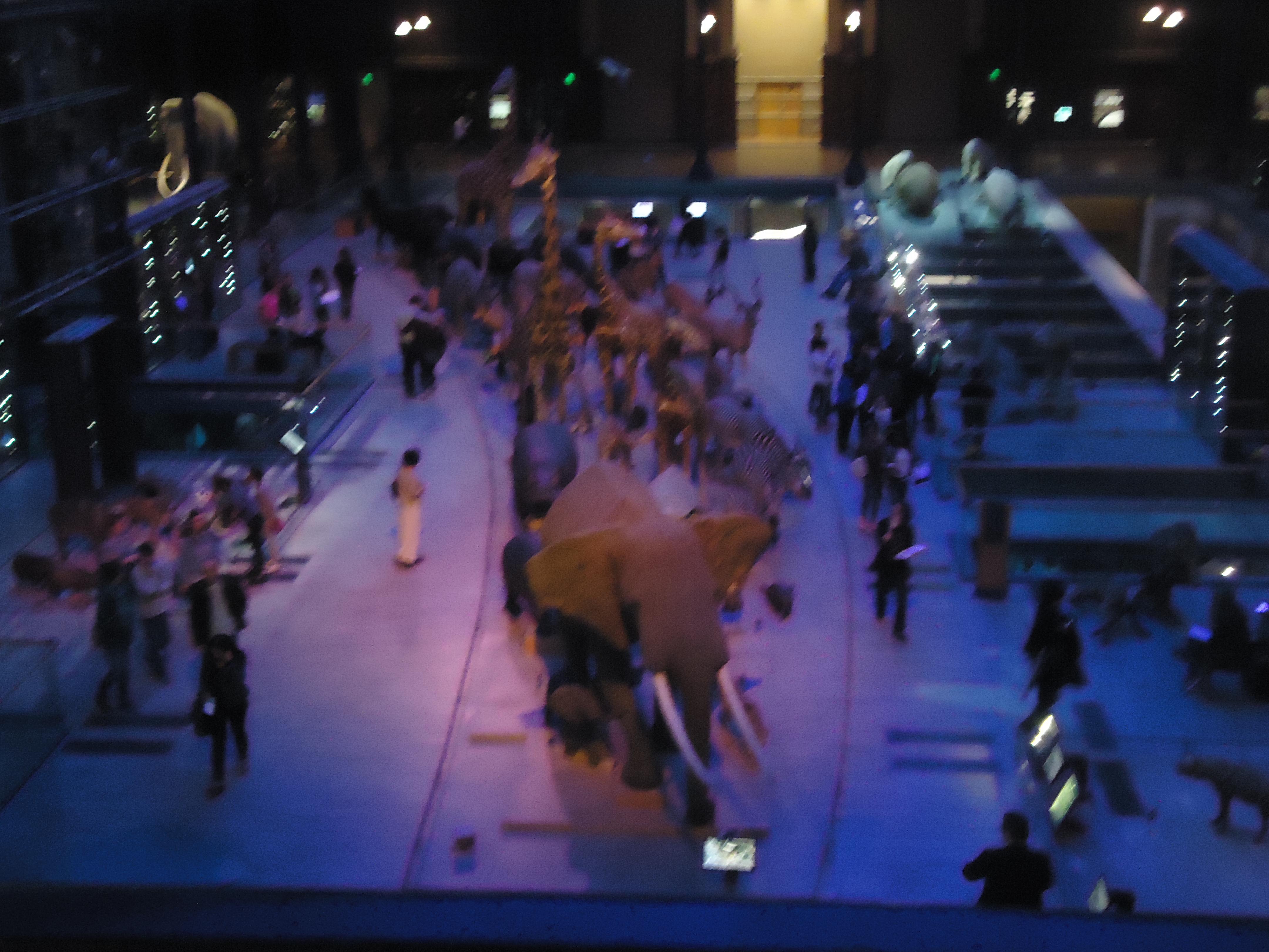 DSC03488 - Musées