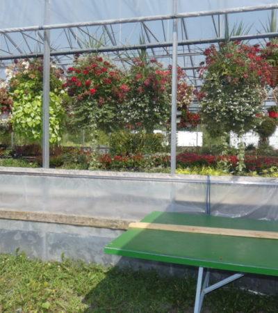 Circuit du Paysan Pépinière de fleurs VoyagesPIA 1024x576 400x450 - Châteauguay