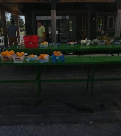 Circuit du Paysan récolte de fruits et légumes VoyagesPIA 1024x576 400x450 - Châteauguay