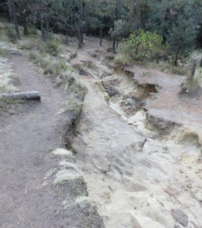 Ascension pédestre du Volcan La Malinche au Mexique VoyagesPIA 1024x768 400x450 - La Malinche