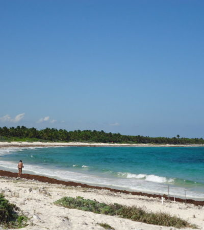 Plage 2 à Playa Del Carmen au Mexique VoyagesPIA 1024x768 400x450 - Cancun