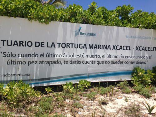 Plage de Tortues à Cancun au Mexique VoyagesPIA 1024x768 500x375 - Cancun