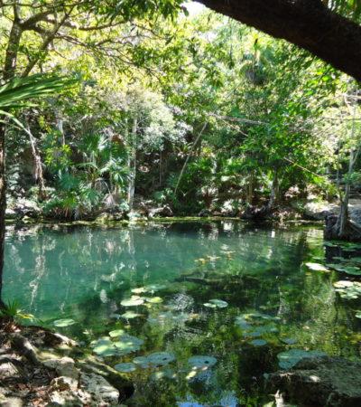 Rivière 5 Chikin Ha au Mexique VoyagesPIA 1024x768 400x450 - Cancun