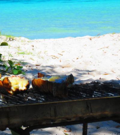 Barbecue langoustes à Cayo Jutias à Cuba VoyagesPIA 1024x768 400x450 - Cayo Jutias