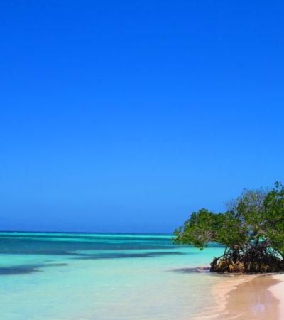 Plage Cayo Jutias 2 à Cuba VoyagesPIA 1024x768 400x450 - Cayo Jutias