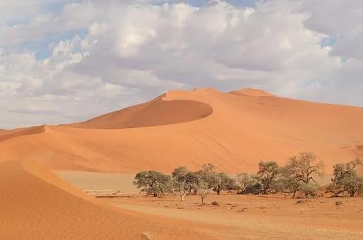 Namibie VoyagesPIA - Namibie