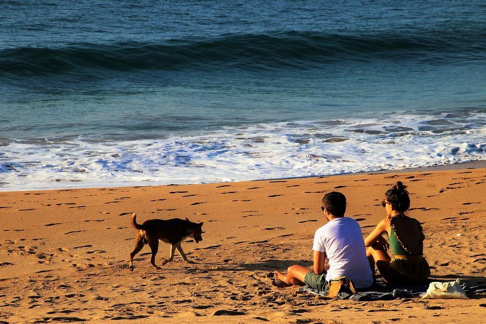 Voyage de noces au Sri Lanka VoyagesPIA - Sri Lanka